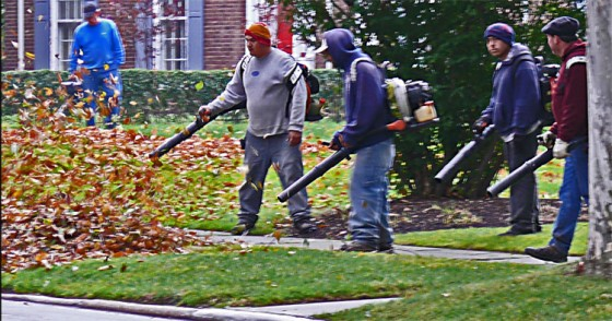 5-guys-with-leaf-blowers